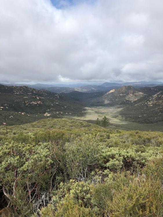 Corral Canyon 4.jpeg