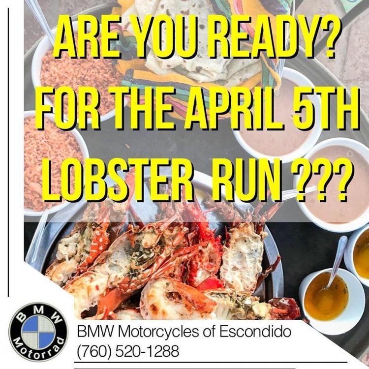 BMW Lobster ride.jpg